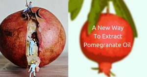 A New Way To Extract Pomegranate Oil