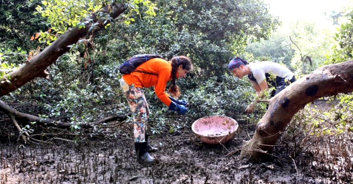 A Green Future: 4 Times Mumbai Came Together to Restore Its Oxygen Chambers!