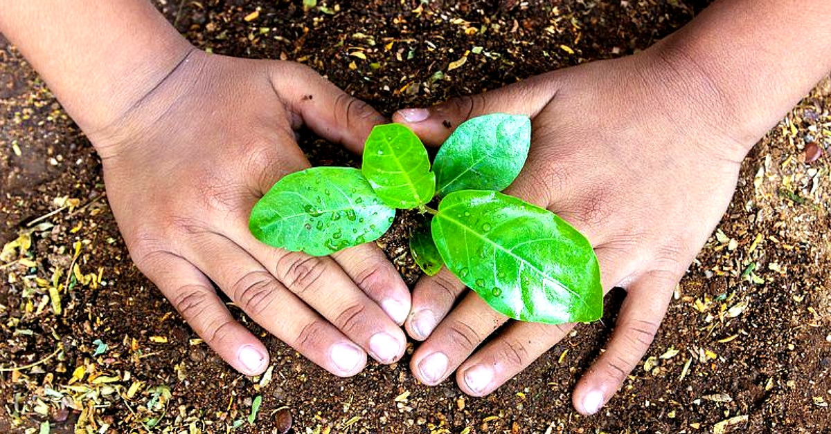 Kerala Students Turn Guardians of Greenery, Save 295 Trees from Being Axed!