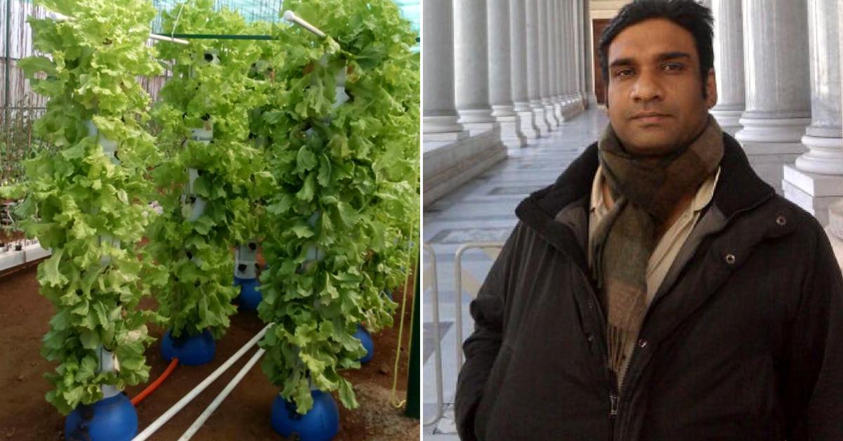 Bengaluru Man Uses Hydroponics To Grow Vertical Gardens & Fodder Machines!