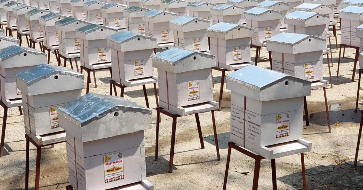 KVIC Sets 'Honey Mission' World Record, Gives 1000 Bee-Boxes to Kaziranga Tribals!