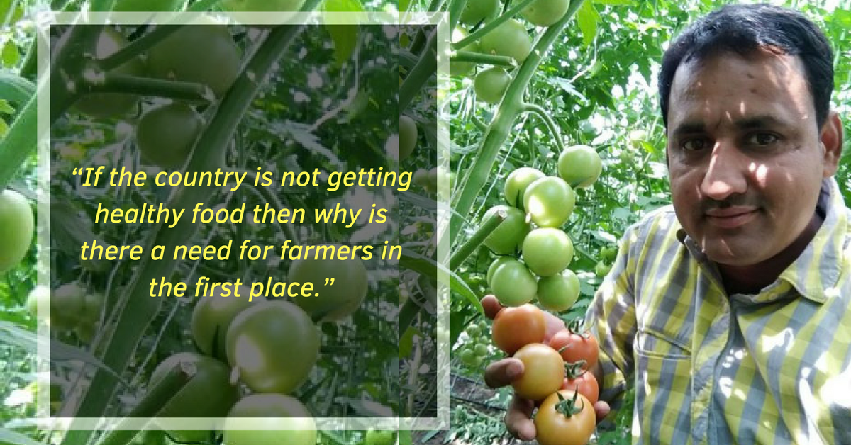 A Farmer's Step-By-Step Guide To Making The Switch to Organic Farming!