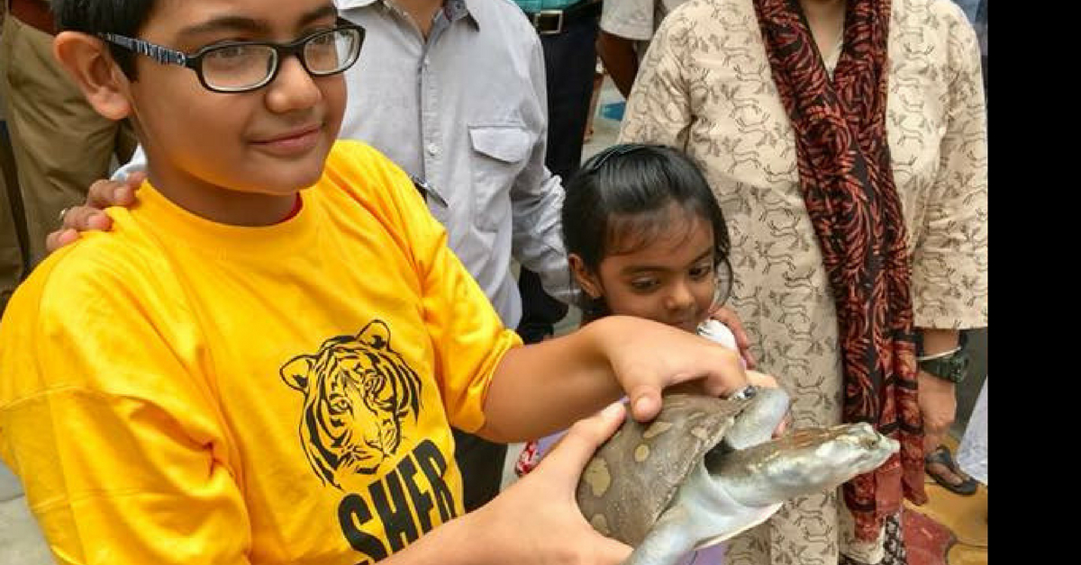 13-Year-Old Boy Sees Turtle Being Sold. What He Did Next Will Leave You Inspired!