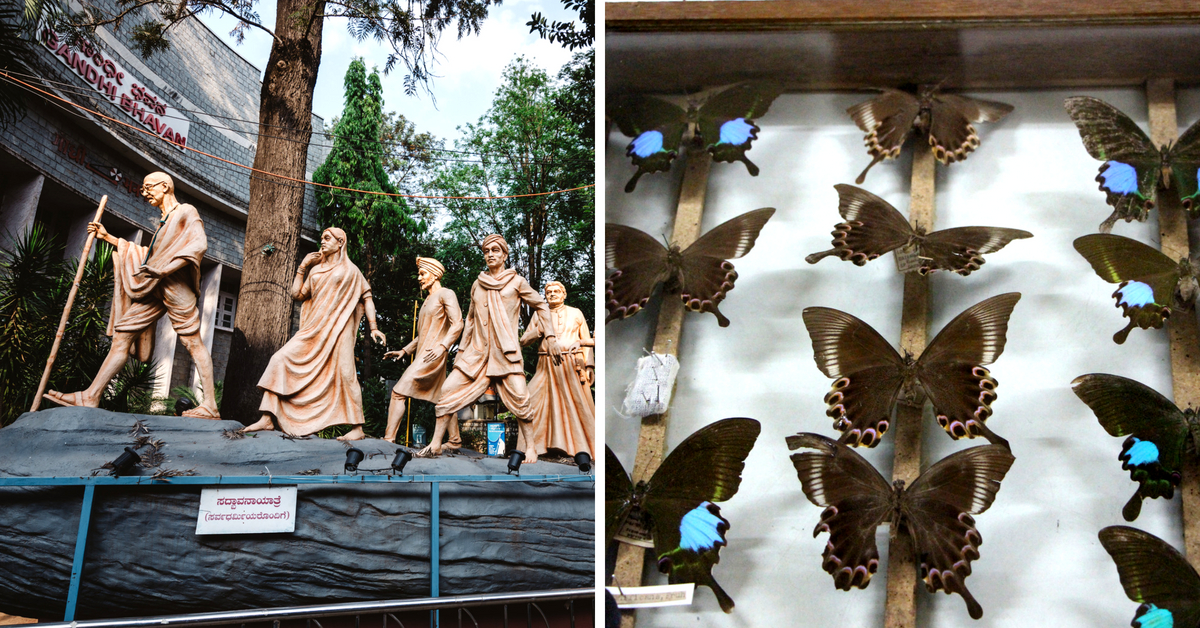 Butterflies, Brains, Turbans & Trains: India's Many Museums All On One Website!