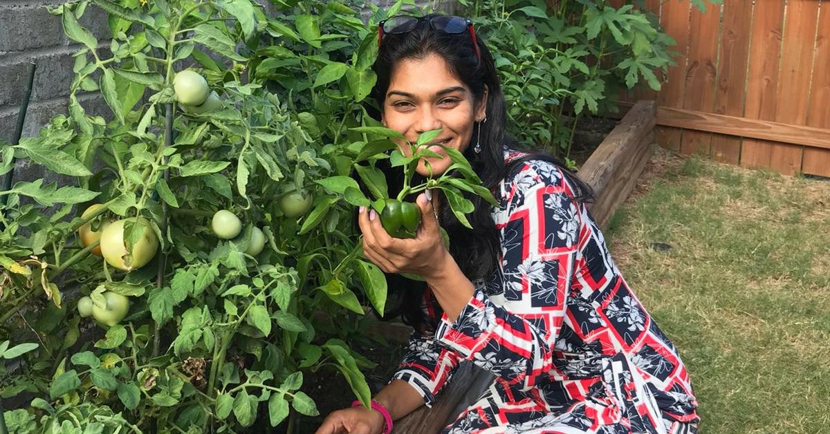 Exclusive: Indian Engineer in US Grows 16 Veggies in Backyard, Inspires Neighbours!