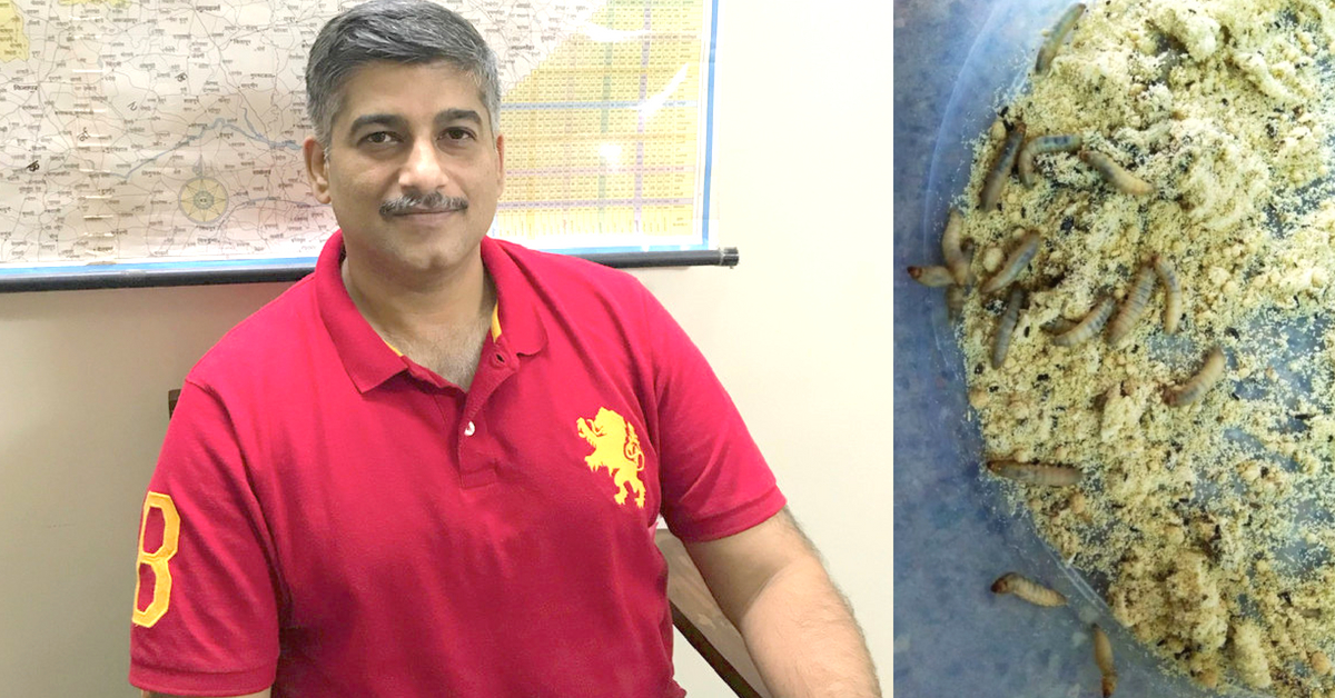 Pune Man May Have Found Solution to Trash Troubles: Caterpillars That Munch Plastic!