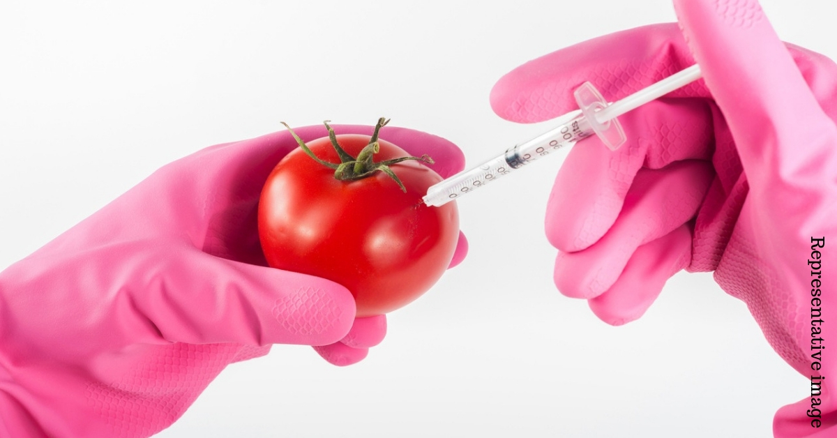 Chennai Engg Grad Invents Simple Test to Check Authenticity of Organic Food!