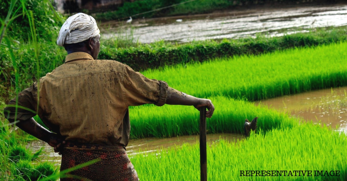 Time to Skip Loan Waivers? 3 States That Offer Farmers a Unique Way Forward