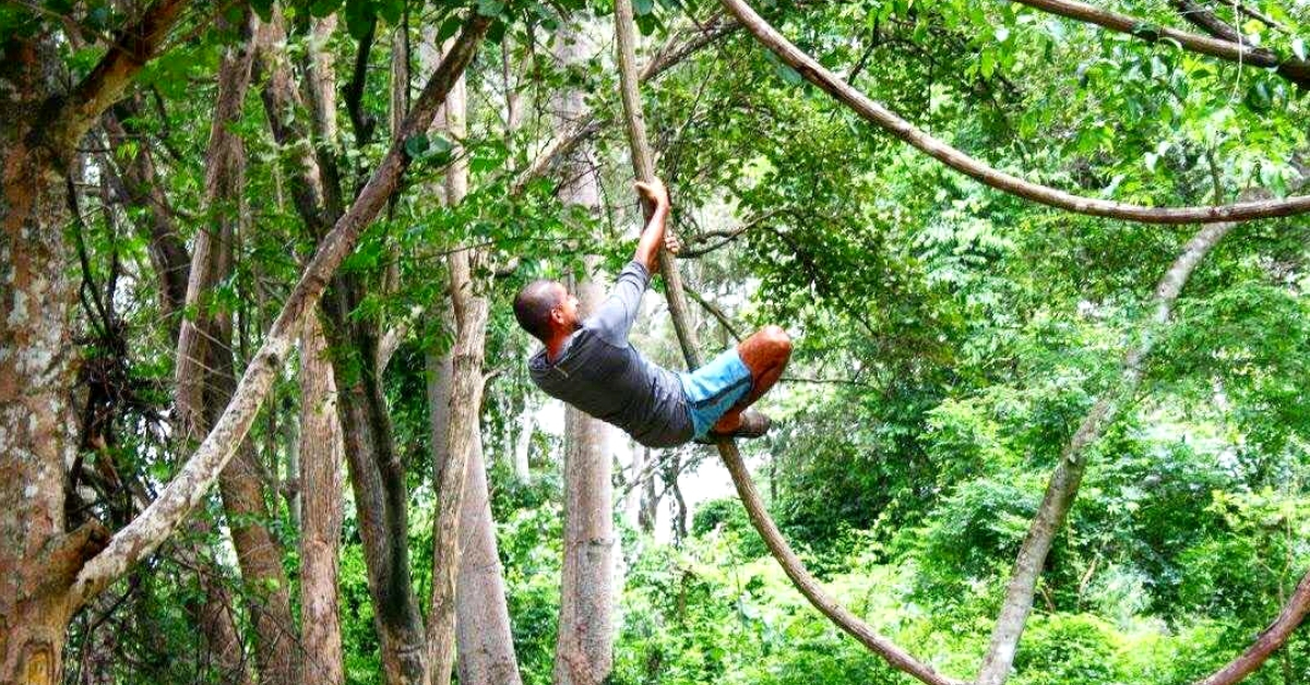 This Malayali NRI Left His Job to Look After A 15-Acre Forest Paradise in Thailand!
