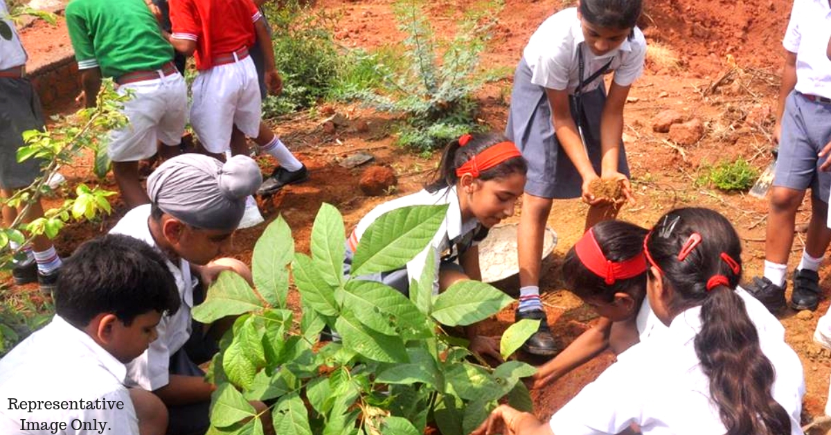 K'taka Forest Dept's Proposal For Students: Plant Saplings, Get Extra Marks in Boards!