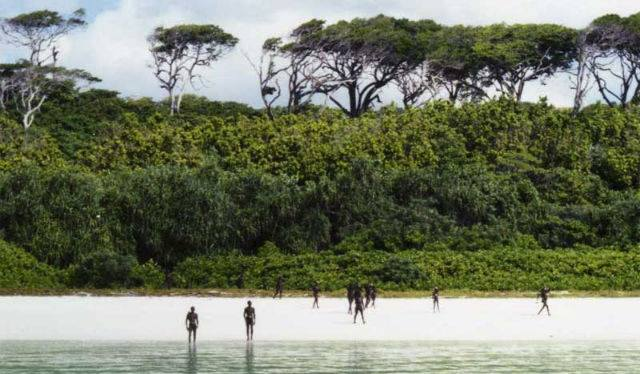 Sentinelese islanders standing at a distance. (Source: Facebook/Andaman & Nicobar Islands)