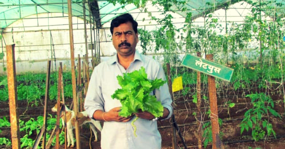 Maha Farmer Pays off Rs 10 Lakh Loan, Helps Create Rs 400 Cr Turnover! Here's How