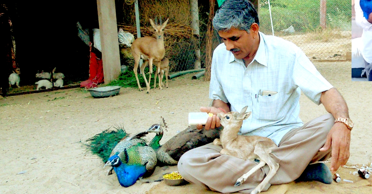 This Roadside Mechanic from Rajasthan Has Rescued Over 1,180 Injured Wild Animals!