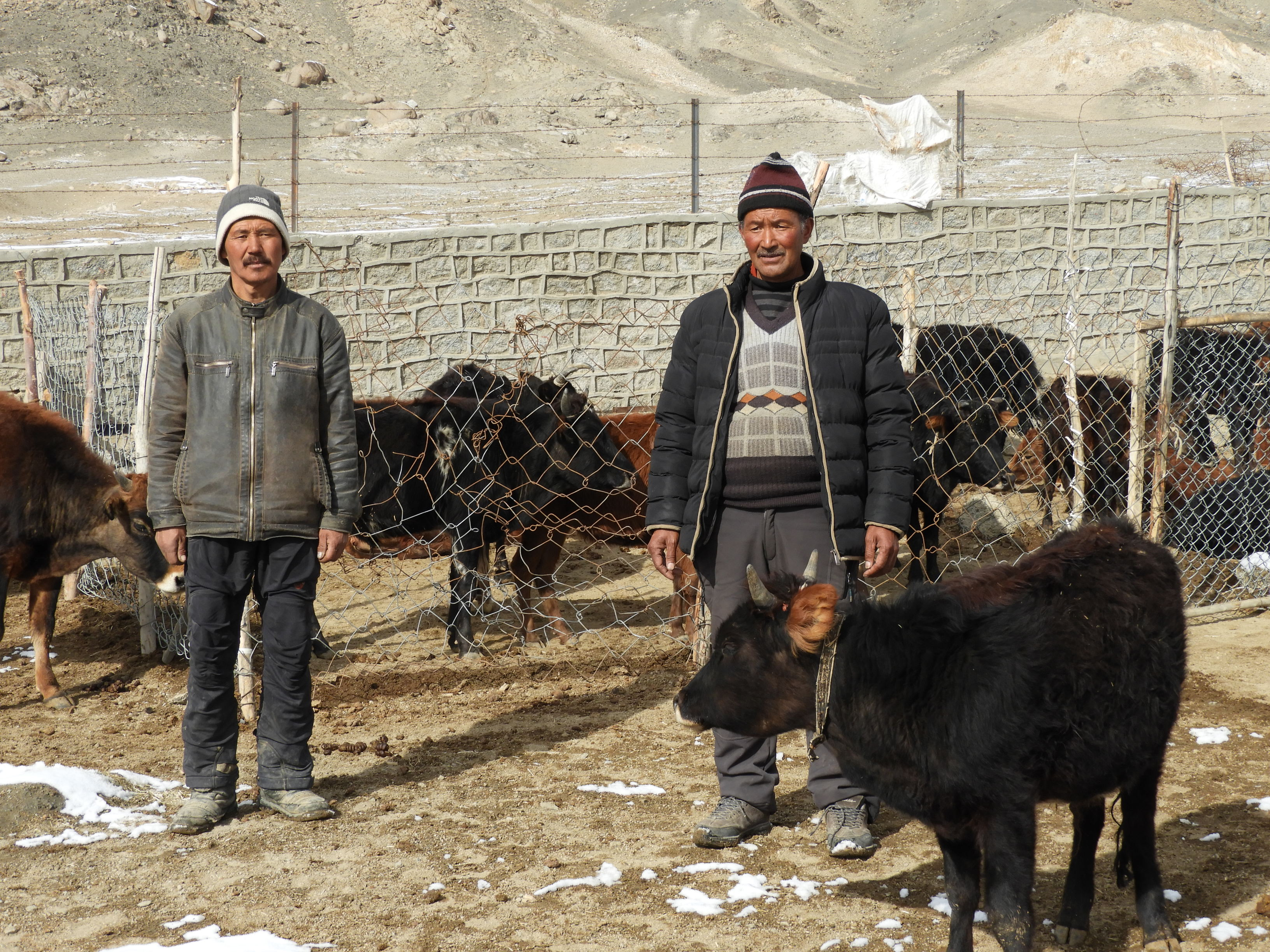 (Source: Rinchen Angmo/Reach Ladakh)