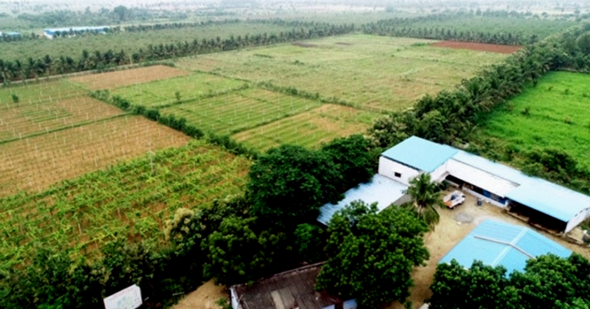 73-YO Man Turns 200 Acre Land Into Organic Farm, Saves 2 Cr Litres of Water/Year!