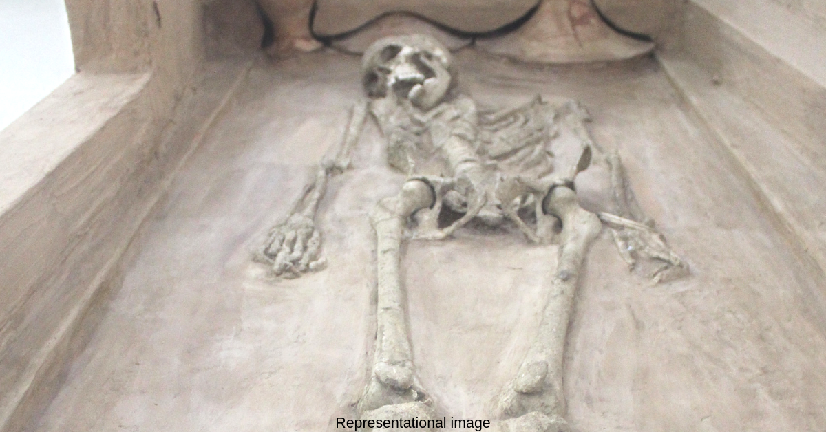 5,000-YO Skeleton Found in Kutch: What It Reveals About the Harappans