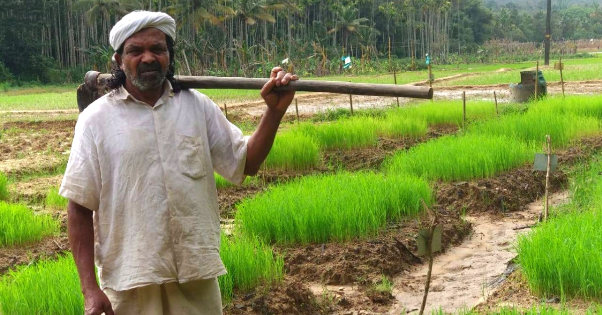 Kerala's 'Guardian of Native Paddy' Lives in a 150-YO Home Made of Mud & Bamboo!