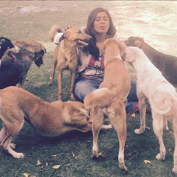 Noida Woman Saves 80+ Injured & Disabled Dogs From Mercy Killings, Gives Them a Secure Life!