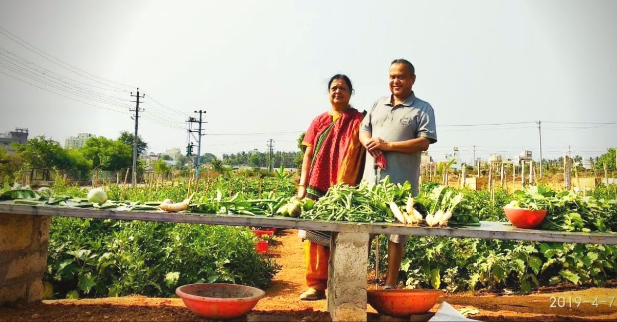 Retd Mysuru Techie Spends Lakhs to Create 14,000 Sq Ft Organic Garden For All!