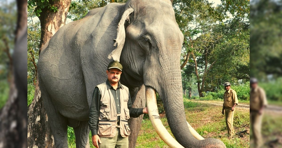 32 Years Without a Weekend Off: This Elephant Doctor Treats 700+ Jumbos Every Year!