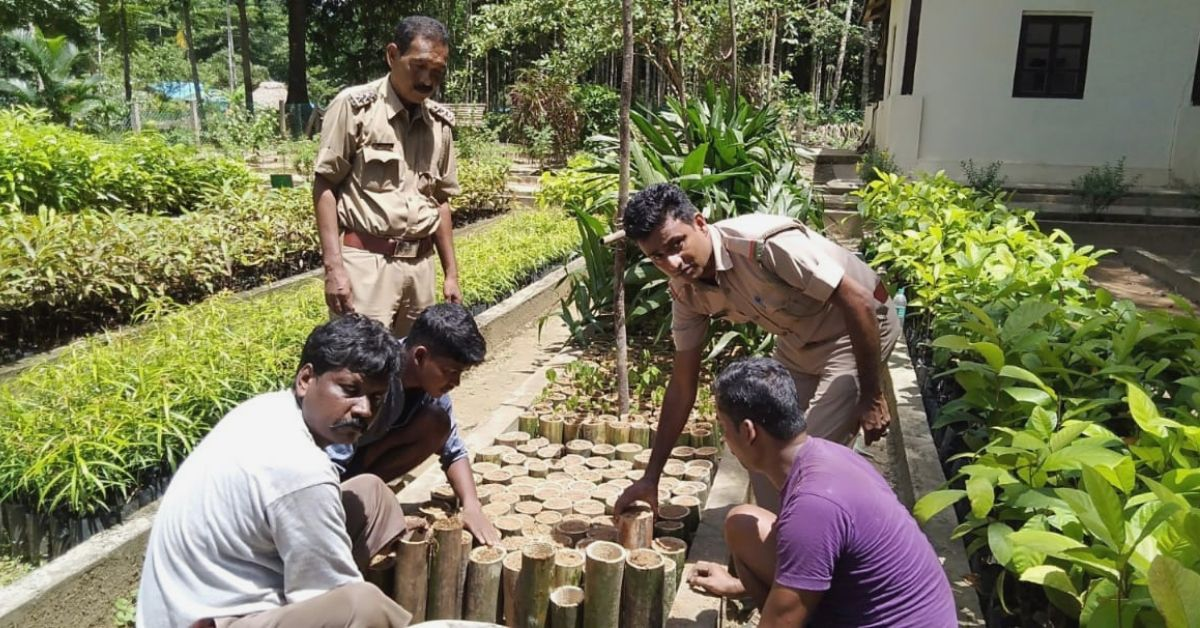 Andaman IFS Officer Replaces Plastic in Dept. Nursery; Uses Bamboo to Plant 500 Saplings!