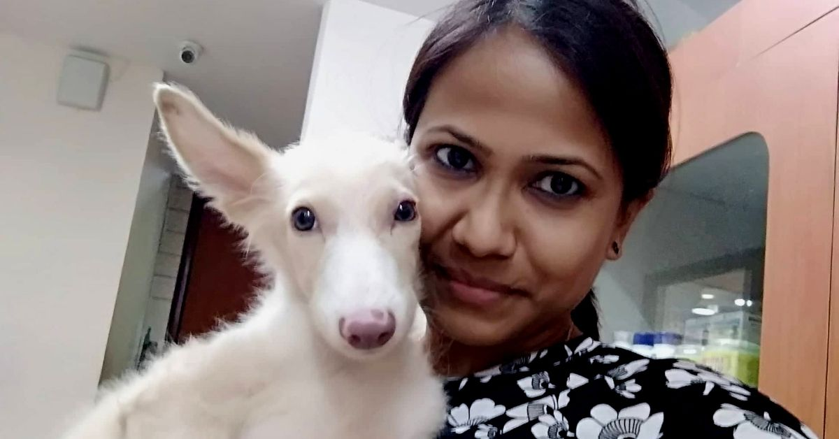 Delhi Woman Raises Rs 1 Lakh to Save Stray Pup, Finds Him a Loving Home in USA!