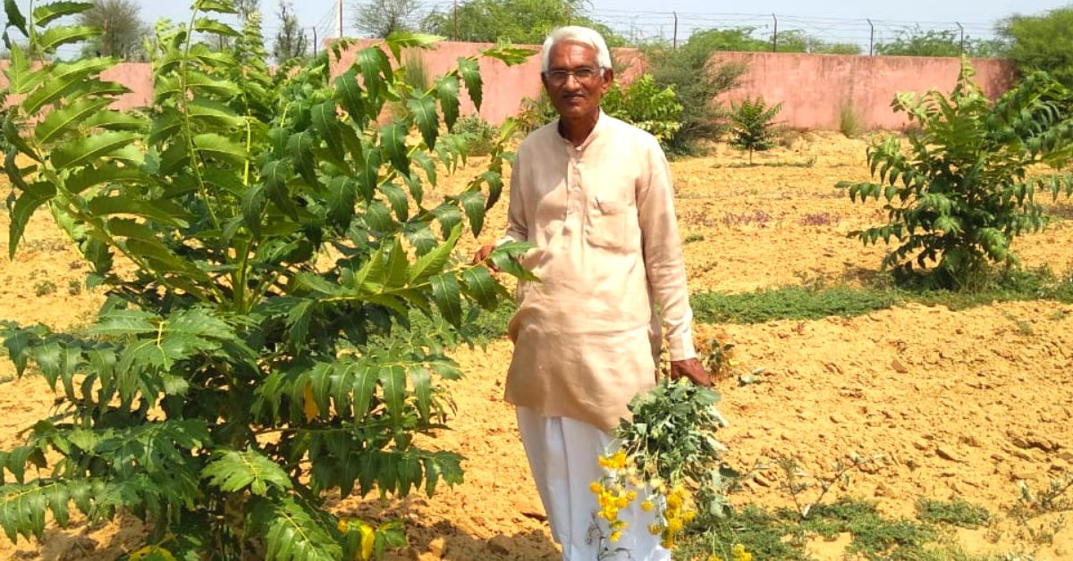 Can a Tree Grow with Just 1 Litre of Water? This 68-YO Farmer Has Grown 50,000!