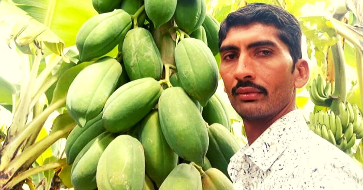 Zero-Budget Natural Farming Doubles Gujarat Farmer's Income In Just 6 Months!