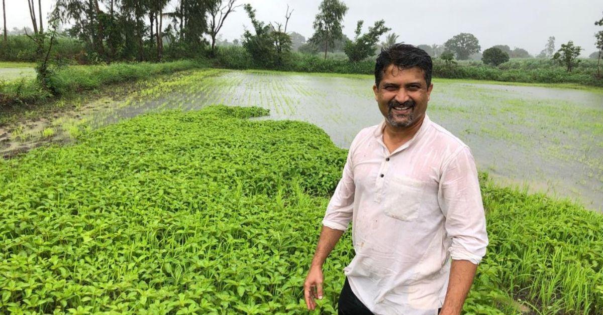 B'luru Engineer Turns Weekend Farmer, Earns Lakhs by Selling Naturally Grown Crops