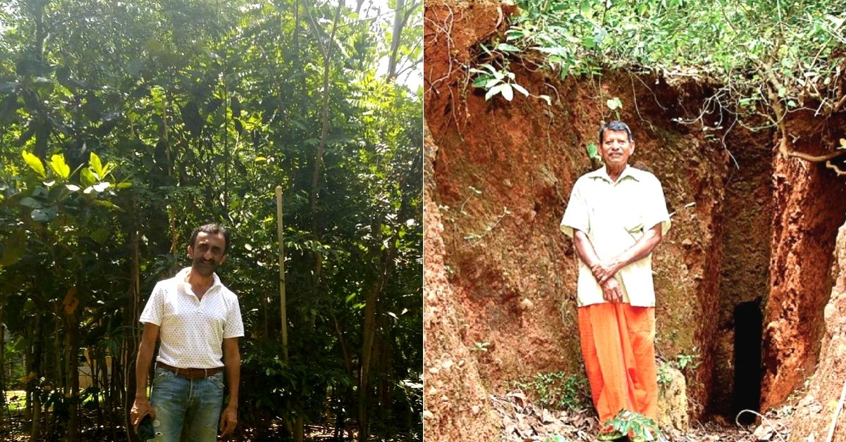 4.5 Million Trees, 4 Years: How People From Across India are Greening the Planet