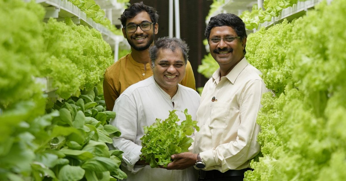 Soil-less & Vertical, This Style of Farming Will Reduce Water Usage By 95%!