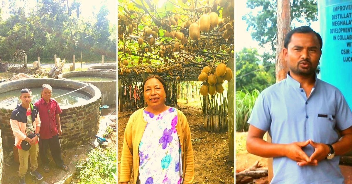 How to Farm Fish? Grow Strawberries? Meghalaya's YouTube Farmers Will Teach You!