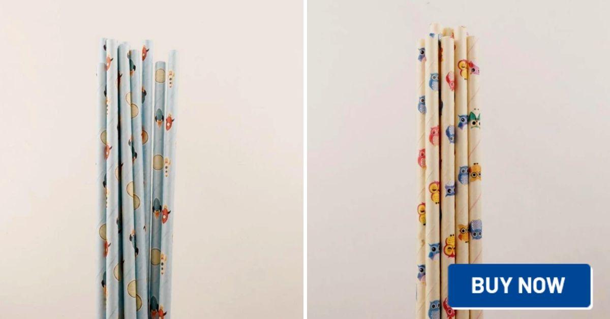 zero waste party straws