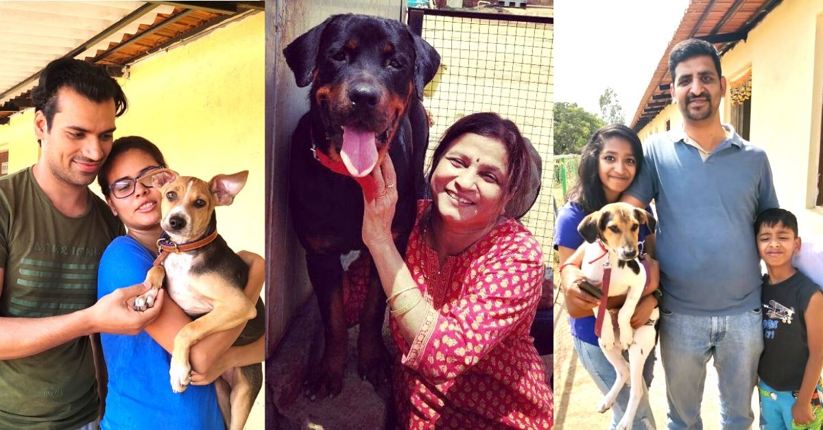 How You Can Adopt A Dog In India 6 Easy Steps