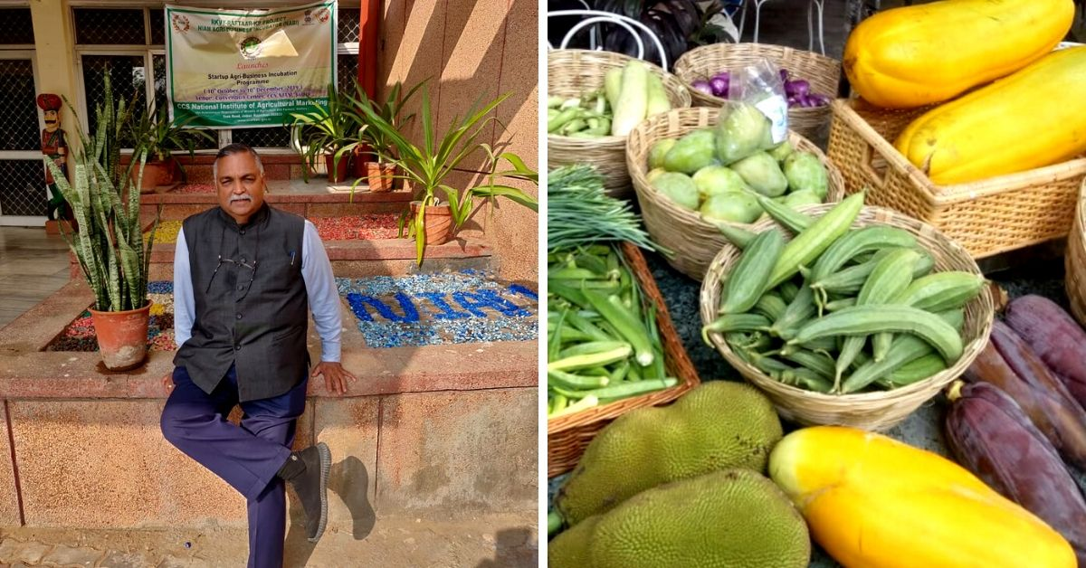 Puducherry, Learn Organic Farming From a Retired Major Who Grows 18 Tonnes/Year