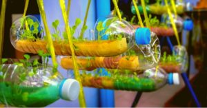 how to set up a hydroponics unit in your balcny using recycled bottles and box