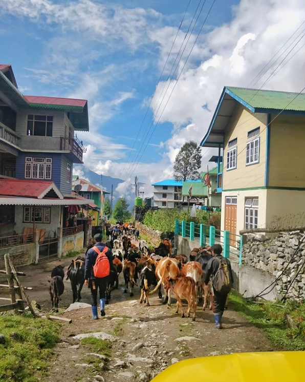 Streets of Lachung (Source: Instagram/m_i.y.e.r)