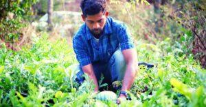 Goa engineer organic farming yellow watermelon profit innovative India jov30