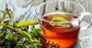 tulsi health benefits