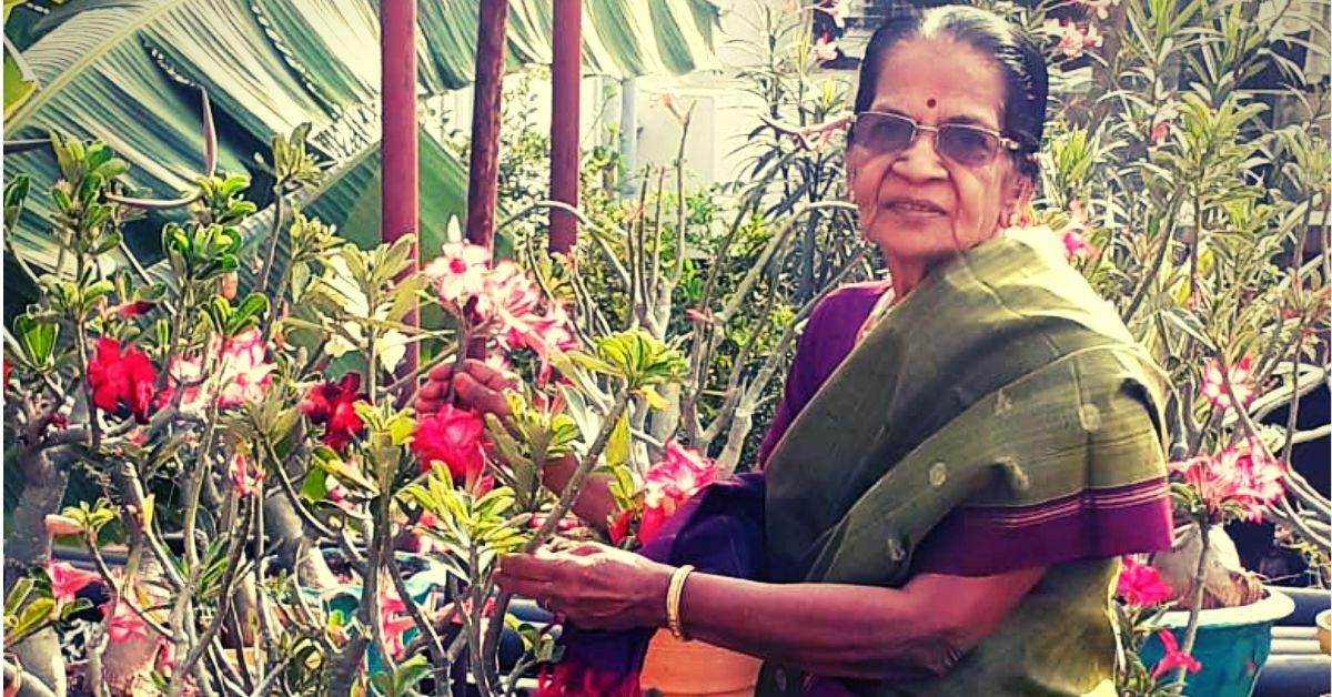 80-YO woman creates a 500-plant urban jungle in the heart of Chennai!