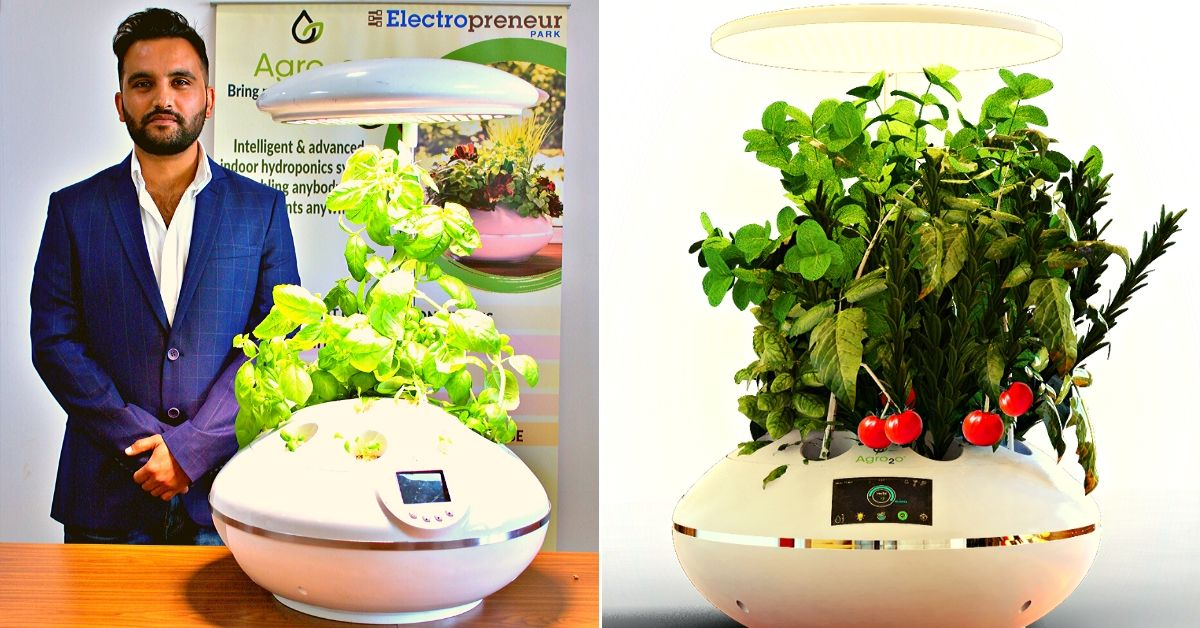 Grow Plants Without Soil: Delhi Startup Powers 'Smart' Hydroponic Garden With AI!