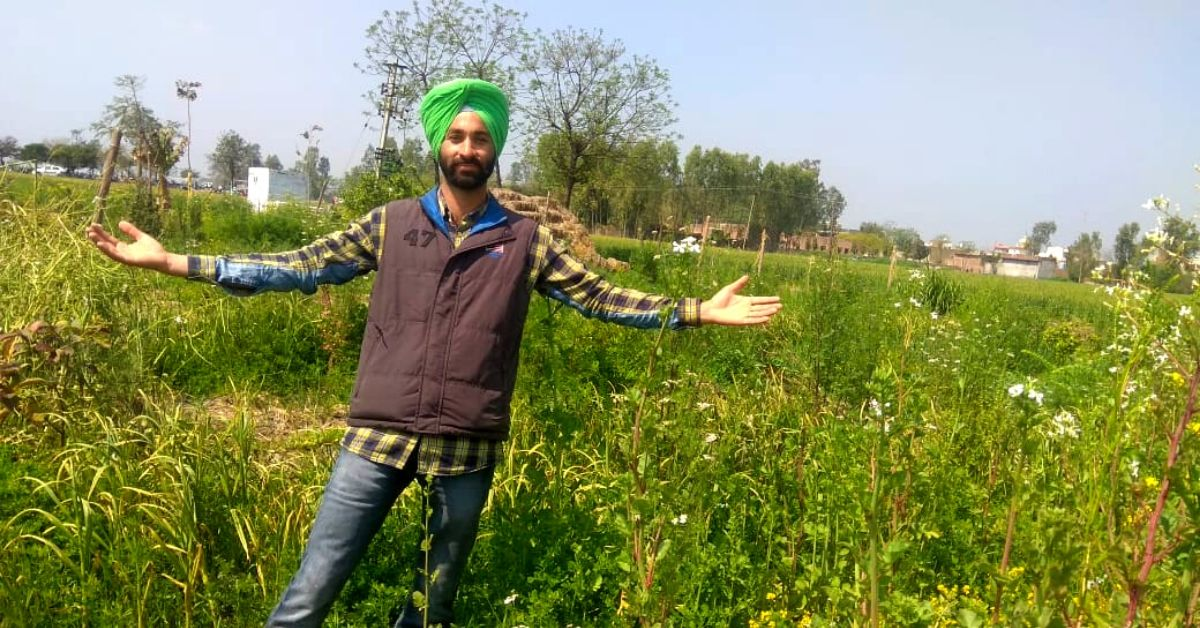 Wife's Pregnancy Makes Punjab Man Start Natural Farming, Now Grows 30+ Veggies