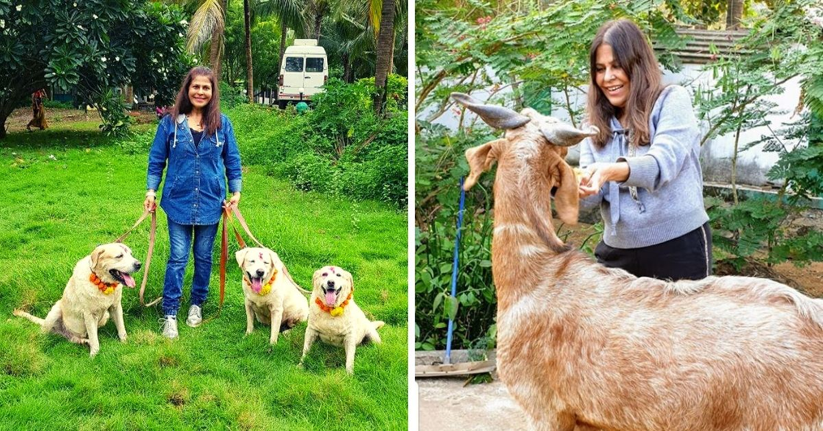 Mumbai Lady Turns Farm Into a Safe Haven for 300 Injured, Abandoned Animals!