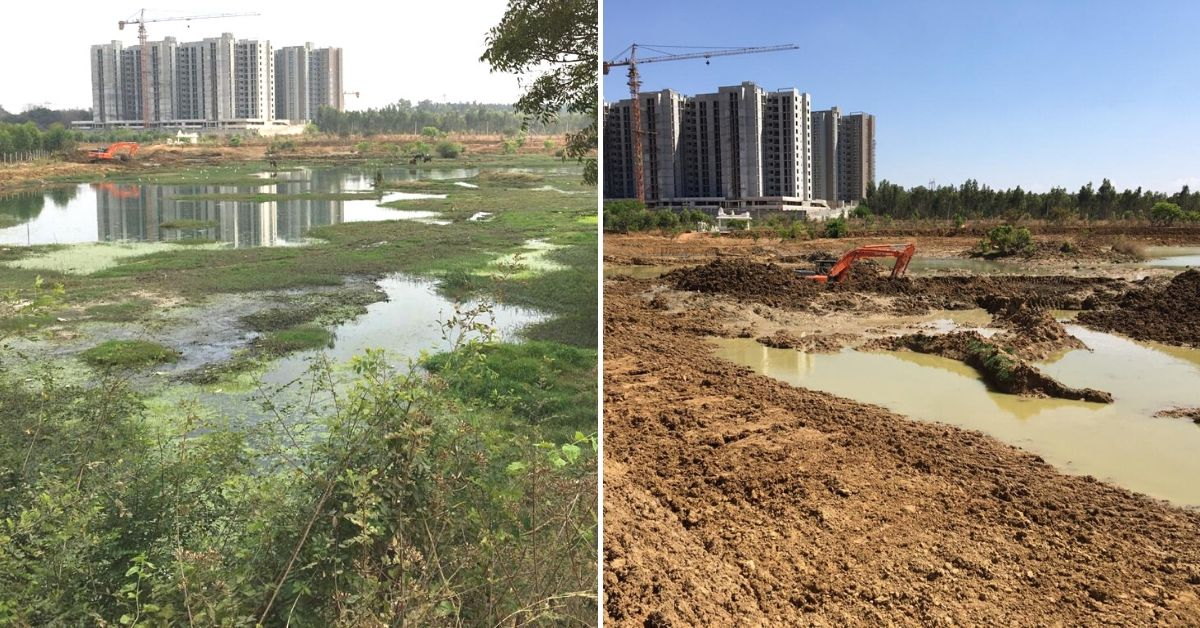 Sewage Was Killing This 32-Acre Bengaluru Lake. Join the Residents Fighting to Save It