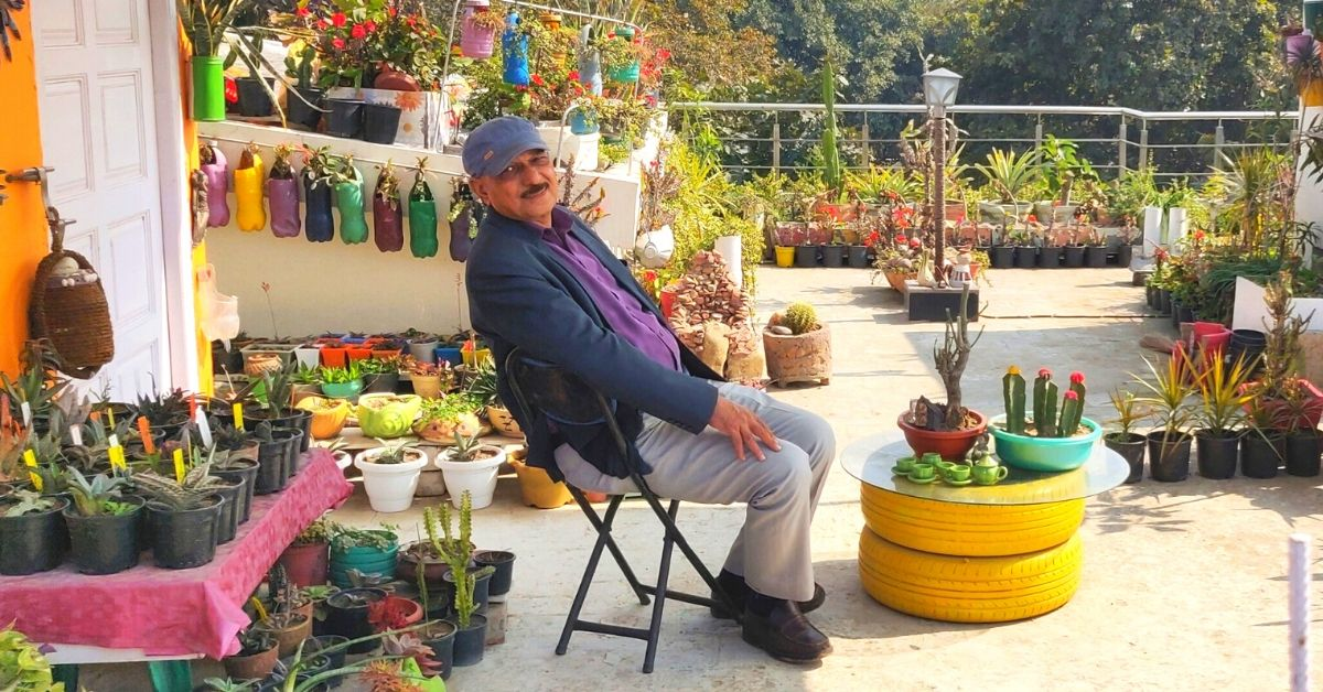 400 Organic Plants & 100+ Pots Made From Waste: Haryana Man's Garden Is Stunning!