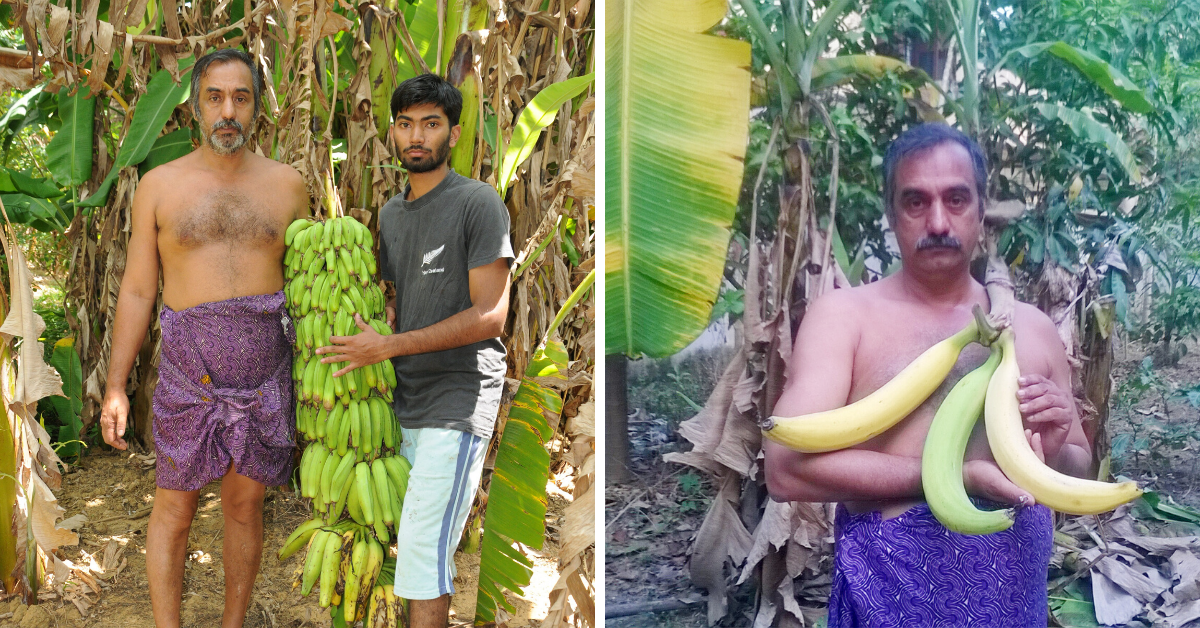 430+ Varieties of Bananas: Kerala Man's 3-Acre Farm Bears Harvest Worth Over a Lakh