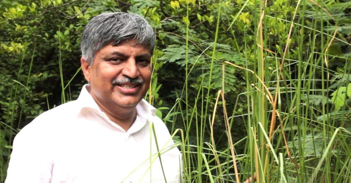IRS Officer Toils For 20 Years to Build 100-Acre Food Forest In MP & Bihar