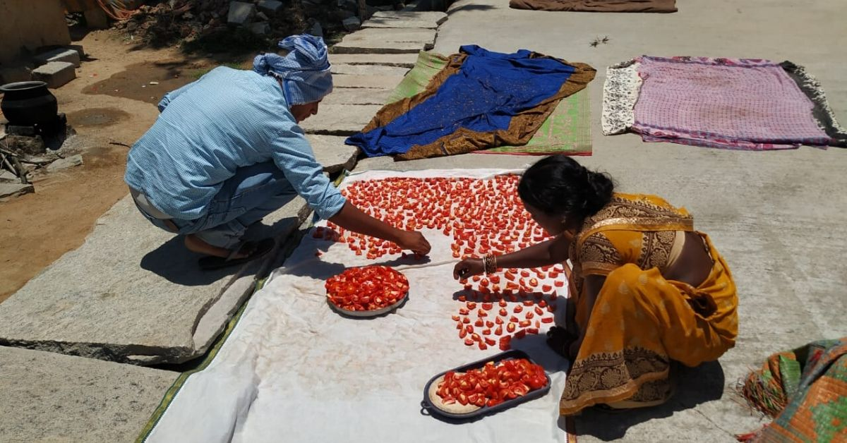 Kolar Farmers' Sun-Drying Method Saves 1 Tonne Tomatoes from Going Waste in Lockdown