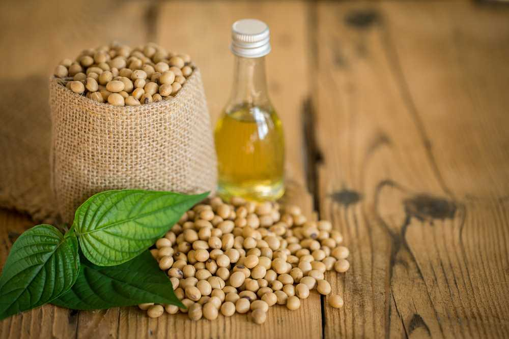 soybean vegetable oil