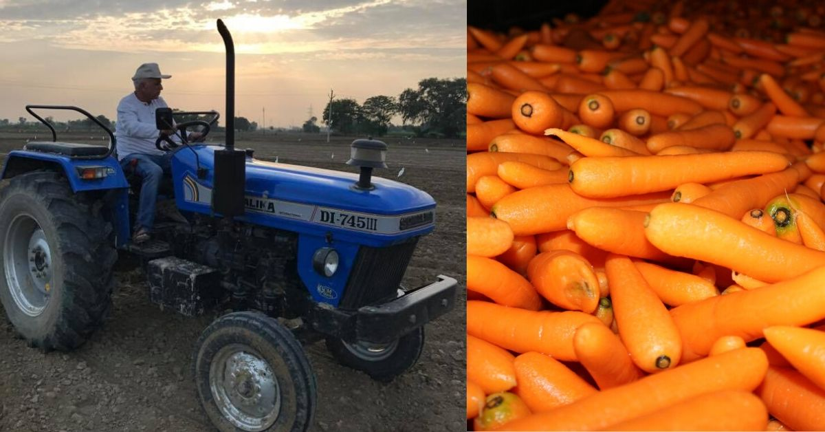 Retd Colonel Turns Carrot King, Makes UP Village India's Largest Carrot Producer